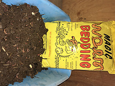 Magic Worm Bedding 1 1/2 lb bag