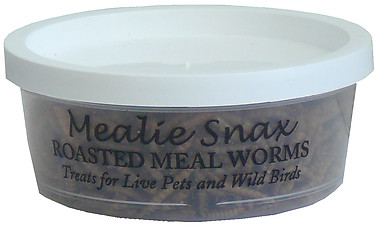 Mealie Snax Roasted Mealworms
